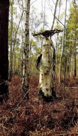 Forest Art...