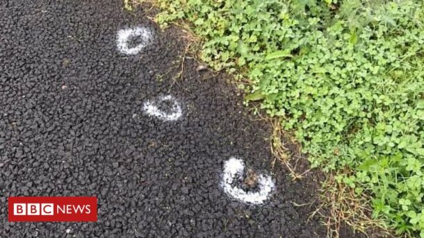 Dog Poo Painter Told To 'cease And Desist' By Owner